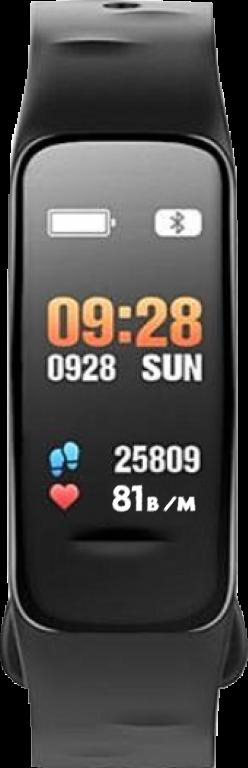 Schwarze Uhr_170x529